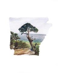 Arkansas State Art Print