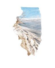 Illinois State Art Print