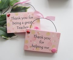 Twin Teacher and Teaching Assistant plaques in Pink