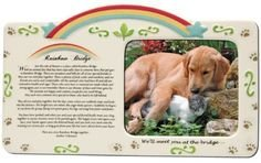 Pet - Rainbow Bridge Frame