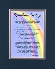 Pet - Rainbow Bridge - Matted Print