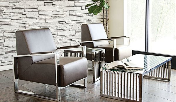Century Accent Chair W Stainless Steel Frame By Diamond Sofa