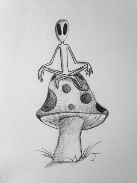 "Alien Shroom 6x9"" Paper Original Graphite Drawing"