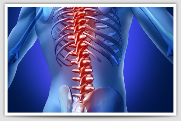 beat back pain so can you: cure back pain without surgery or drugs