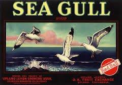 'Sea Gull' Brand Crate Label