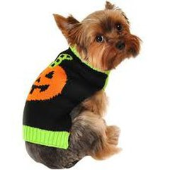 'Halloween Sweaters For Pets' S