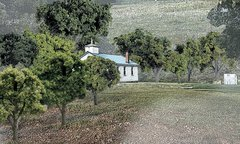 "Woodland Scenics 3/4-2"" Mixed Green Premium Trees 38/Pk"