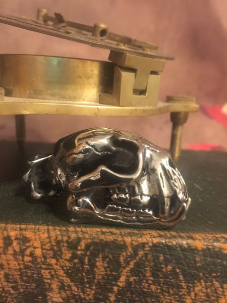 Polished Steel Cat Skull Pendant