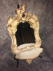 Racoon Skull Mirror