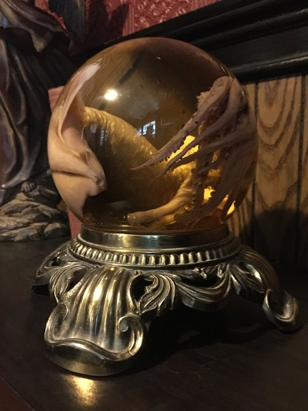 Sold Preserved Squid Globe
