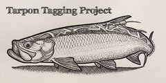 Tarpon Tagging Project Donations