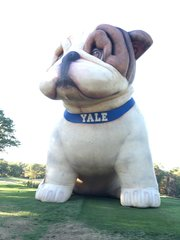 AUGUST 4, 2018 On Course Golf Clinic at YALE 10am-5pm