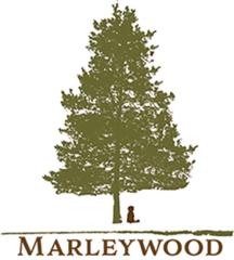 8' long x 4' high Cedar Trellis for Raised Garden Bed by Marleywood