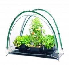 Culti Cave® Mini Greenhouse