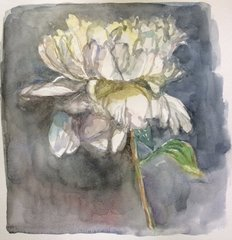 White Peony with Grey