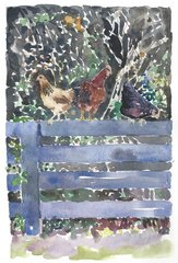 Black Fences with 3 Hens