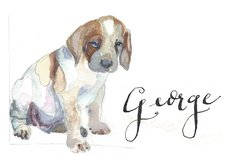 12 Printed Foxhound Pup Place Cards