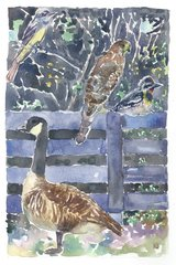 Black Fences with Goose