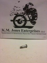 21-0541 / S541, Pivot Pin, Kickstart Pedal