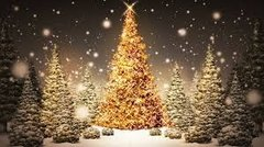 25 Christmas Tree Small Gel