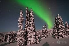 48 Alaskan Wilderness Personal Touch