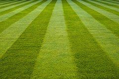 118 Fresh Cut Grass Medium Gel