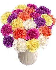 100 Carnation Aroma Crystals