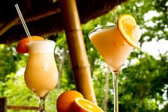 54 Summer Orange Personal Touch