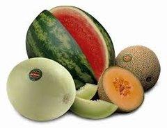 78 Melon Small Spray