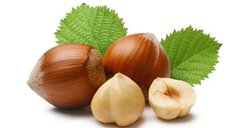 106 Hazelnut Small Spray
