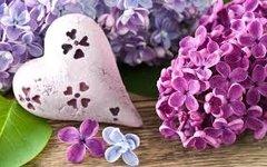 42 Lilac Incense Sticks