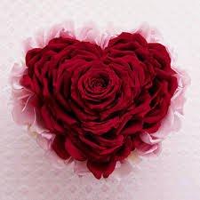 5 Rose Petal Small Gel