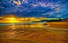 12 Seashore Large Gel