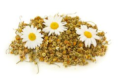 116 Chamomile Small Gel