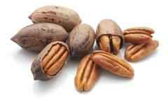 107 Pecan Small Spray