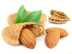 98 Almond Medium Gel