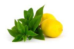 121 Verbena & Lemon Large Scented Gel
