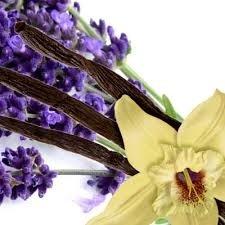 56 Lavender Vanilla Large Scented Gel