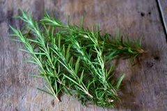 110 Rosemary Dram Oil