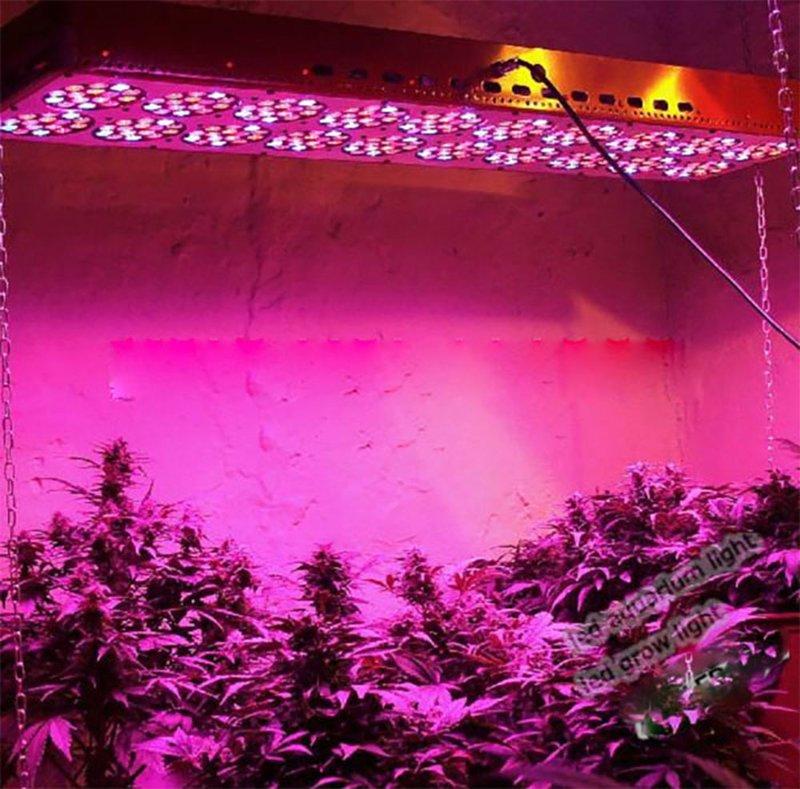 Bossled 1600w Full Spectrum Led Grow Light Bossled