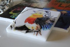 """Bird Songz"" (Set Of 2)"