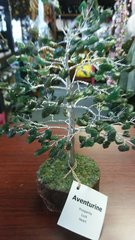 Gem Tree Green Aventurine