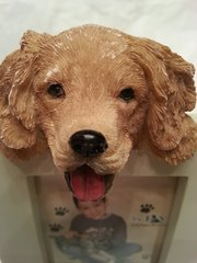 Pet Frame-Golden Retriever