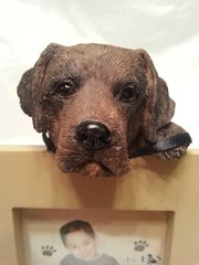 Pet Frame-Chocolate Labrador