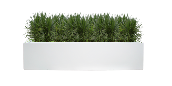 Fiberglass Planter Low Long Rectangle Commerical