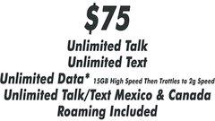 $75 Selectel Monthly Plan