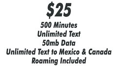$25 Selectel Monthly Plan