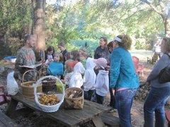 Mushroom Mountain Farm Tour