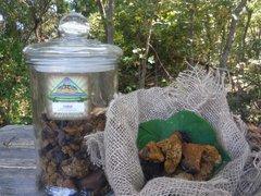 Chaga Mushroom, Dried