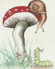 Snail and the Catterpillar Postcard